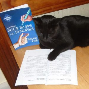 "Rayne's cat Sulu enjoying ""Writing Book Blurbs and Synopses"""