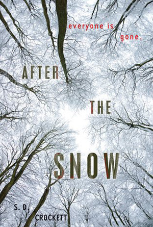 After the Snow by S.D. Crockett - White Cover Design