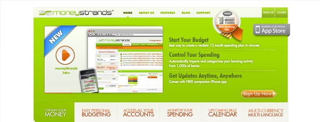 Financial Services Website