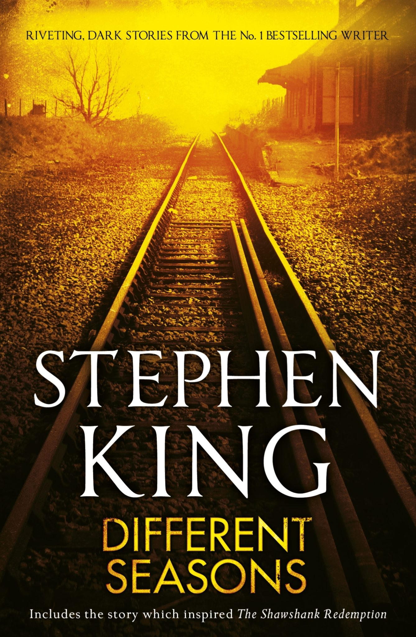 stephen-king-50-scaled