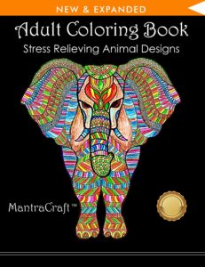 Adult Coloring books 16