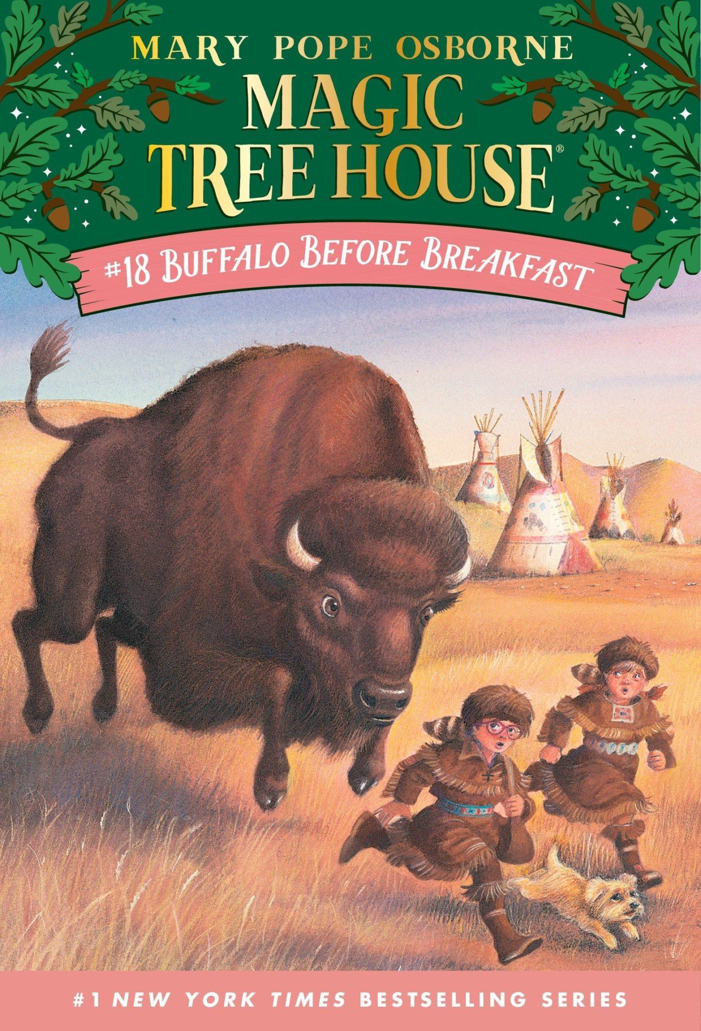 Magic Tree House books 18