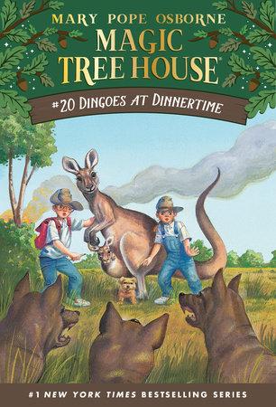 Magic Tree House books 20
