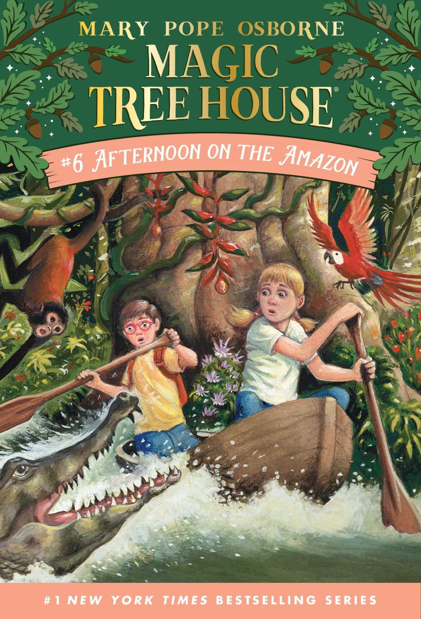 Magic Tree House books 6