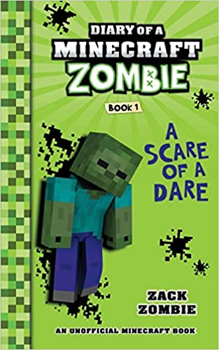 Minecraft books 11