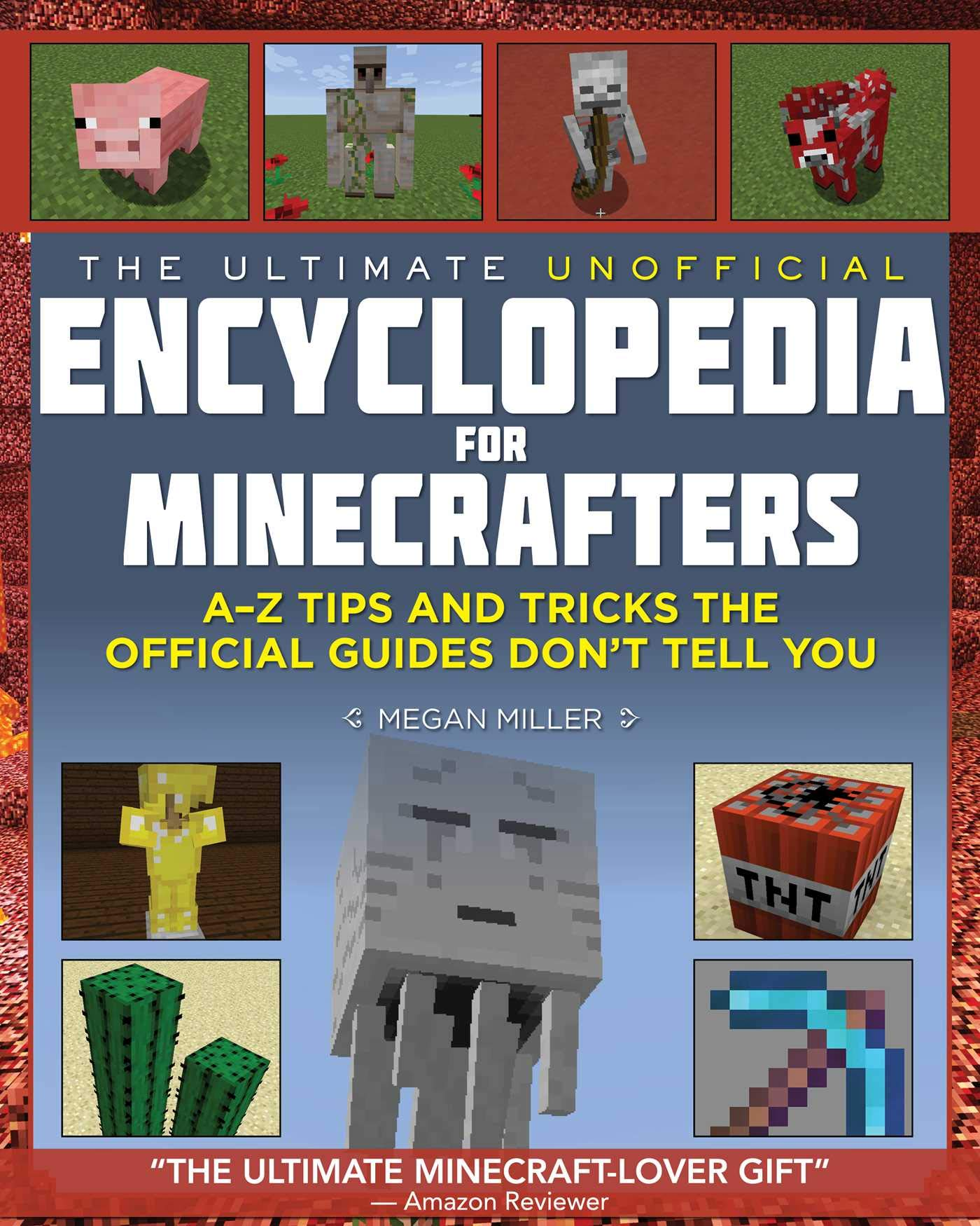 Minecraft books 14