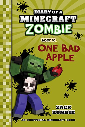 Minecraft books 17